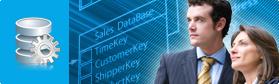 Providing Bespoke Database Design